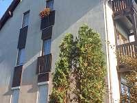 Karlovy Vary - apartmán k pronajmutí - 8