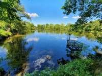 Chalupa Racov rybník - pronájem