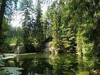 Lesní lom