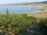 Jezero Medard - pronájem chaty Habartov