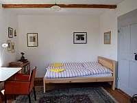 Historická Villa Brod - vila k pronájmu - 10