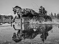 Závody koňských spřežení Nebanice