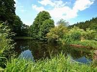rybník na zahradě
