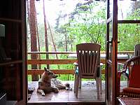 Klasická dřevěná chata u Hracholusek - pronájem chaty - 18 Erpužice - Malovice