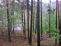 Klasická dřevěná chata u Hracholusek - chata - 16 Erpužice - Malovice