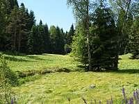 Rotava - Růžové Údolí - chalupa k pronajmutí - 19