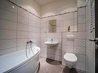 koupelna s vanou - apartmán k pronájmu Drmoul