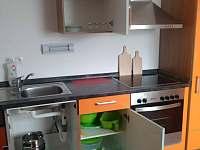 Hartmanice - apartmán k pronajmutí - 11