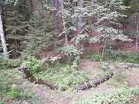 Liščí chata - pronájem chaty - 12 Hůrky