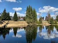 Levné ubytování Koupaliště Puleček Apartmán na horách - Lázně Kynžvart - Lazy