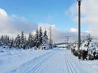Běžecká trasa - chalupa k pronájmu Horní Blatná