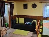 Obývací místnost s krbovými kamny - chalupa k pronajmutí Horní Blatná