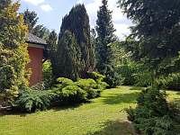 Zahrada - apartmán k pronájmu Trhanov