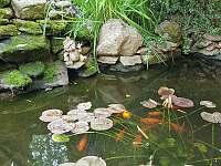 Zahradní jezírko - apartmán ubytování Trhanov