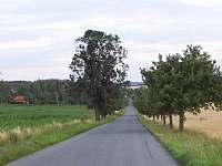 okolí obce Týček