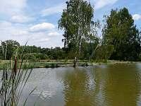 U rybníků 1