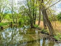 Řeka Úslava - Smederov