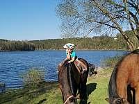 Možnost plavení koní - chata k pronajmutí Pňovany