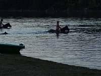 plavání s koňmi - chata k pronájmu Pňovany