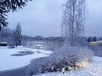 Srub u rybníka - srub - 37 Velká Hleďsebe