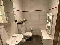 Koupelna - vila k pronajmutí Mladotice - Malá Černá Hať