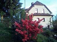 Dolní Žandov - Rekreační dům - 3