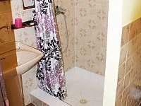 Velký apartmán - koupelna - pronájem Karlovy Vary - Doubí