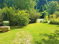 Zahrada před domem - chalupa k pronájmu Krásno - Dolní Hluboká