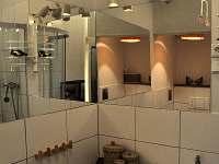 Koupelna (velký apartmán) - k pronajmutí Bečov nad Teplou